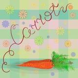 Saftige Karotte Sommervektorillustration Der Hintergrundschottenstoff Stockbilder