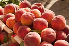 Saftige Pfirsiche stockfotos