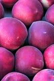 Saftige purpurrote Pfirsiche Lizenzfreie Stockfotos