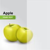 Saftige reife Äpfel Vektor Abbildung