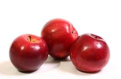 Saftige, reife, rote Äpfel Stockbilder