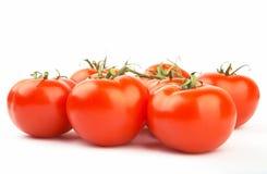 Saftige rote Tomaten XXL Lizenzfreies Stockfoto