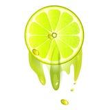 Saftige Scheibe der Zitronefrucht lizenzfreie abbildung