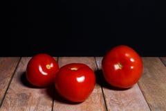 Saftige Tomaten stockbild