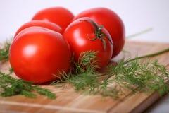 Saftige Tomaten Stockfotos
