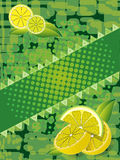 Saftige Zitrone Lizenzfreie Stockfotos
