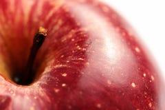 Saftiger roter Apfel Stockbilder