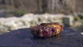Saftiges fetthaltiges Stück Fleisch beim Würzen, auf heißen Stein am Lagerfeuer mit Rauche Küche in der im Freien auf Natur sich  stock video footage