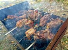 Saftiges Fleisch auf dem Feuer - grillen Sie Partei Lizenzfreies Stockbild