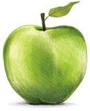 saftigt äpple Royaltyfri Fotografi