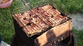 Saftigt kött stekas på kol stock video
