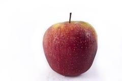 saftigt moget för äpple Arkivfoton