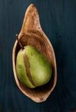 Saftigt nytt päron Fotografering för Bildbyråer