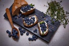 Saftigt organiskt för smakligt sunt blåbär för matbrödgräddost Royaltyfri Fotografi