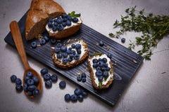Saftigt organiskt för smakligt sunt blåbär för matbrödgräddost Arkivfoto