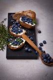 Saftigt organiskt för smakligt sunt blåbär för matbrödgräddost Fotografering för Bildbyråer