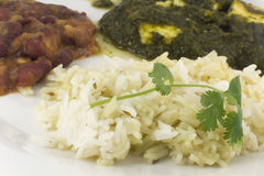 Sag Paneer - authentic Indian food Stock Photography
