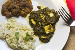 Sag Paneer - authentic Indian food Royalty Free Stock Photos