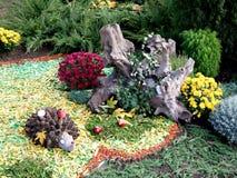 Saga för blom- design för igelkottlandskap Royaltyfri Bild