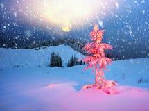 Saga för vinter` s Royaltyfri Foto