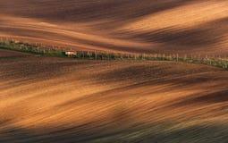 Saga Minimalistic jordbruks- Autumn Landscape With Small Royaltyfria Bilder