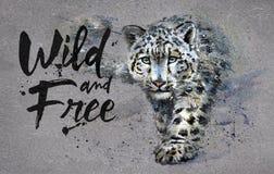 Sagacidade selvagem e livre do leopardo de neve da aquarela da pintura, predador dos animais, projeto do t-shirt, cópia, inverno, ilustração do vetor
