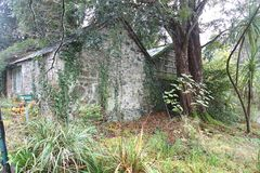 Sagahus i skoghösten i Wicklow, Irland Royaltyfri Bild