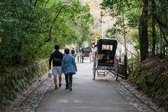 Sagano Bamboo Forest in Arashiyama stock photography