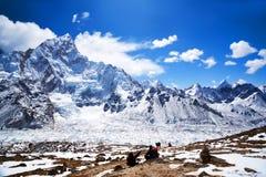 Sagarmatha National Park, Nepal Himalaya Stock Photos