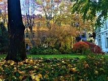 Sagaträdgård och höst royaltyfri fotografi