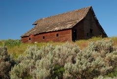 Sage and Barn Stock Photo