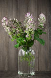 Sage bouquet Stock Photography