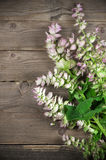 Sage bouquet Royalty Free Stock Photography