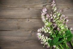 Sage bouquet Stock Images
