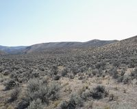 Sage brush in a valley of high desert landscape. With mountain range in the distant horizon royalty free stock photo