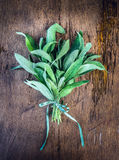 Sage bunch with ribbon on rustic wooden background, top Royalty Free Stock Photography
