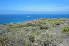 Sage Community côtier dans la région de Dana Point Headlands Conservation image stock