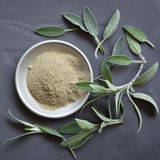 Sage Dried and Fresh Top View on Slate Stock Photo