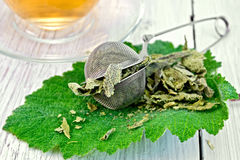 Sage dried in strainer on fresh leaf Royalty Free Stock Image