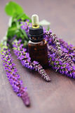 Sage essential oil Royalty Free Stock Photos