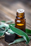 Sage essential oil and fresh sage Stock Images