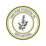 Sage, essential oil label, aromatic plant Stock Images