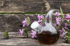 Sage flower essential oil. Bedstraw flower essential oil. Naturopathy. Herbal medicine stock photography
