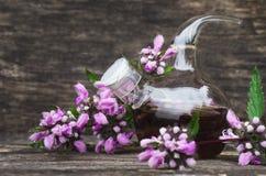 Sage flower essential oil. Bedstraw flower essential oil. Naturopathy. Herbal medicine royalty free stock photo
