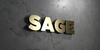 Sage - Gold sign mounted on glossy marble wall  - 3D rendered royalty free stock illustration Royalty Free Stock Images