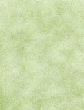 Sage green textured paper Royalty Free Stock Image