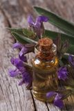 Sage oil in a glass bottle closeup vertical Stock Photo