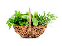 Sage, parsley and rosemary in wicker basket Royalty Free Stock Photography