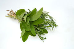Sage and rosemary Stock Photo