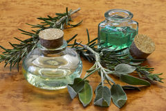Sage and rosemary essential oil Stock Images